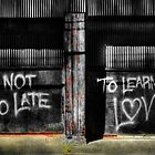 It's Not Too Late by Dana Horne
