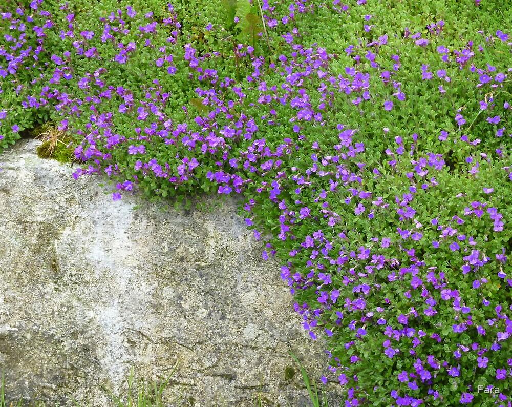 Pretty Purple by Fara