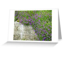 Pretty Purple Greeting Card
