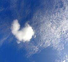 love is in the air by Angelika Sielken