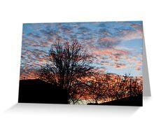 Back Yard Sunrise Greeting Card