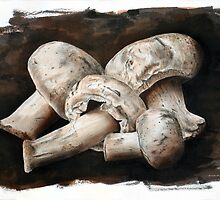 Mushrooms by jsalozzo