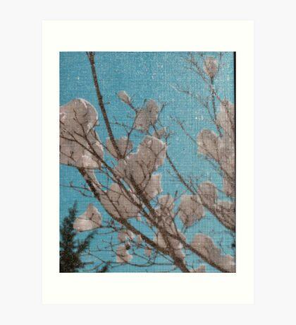 Snow Blooms Behind a Screen Art Print