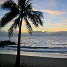 Palm Sunday by Bevlea Ross