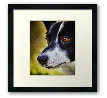 The love in her eyes Framed Print