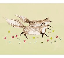Running Foxes Photographic Print