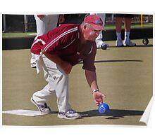 M.B.A. Bowler no. d033 Poster