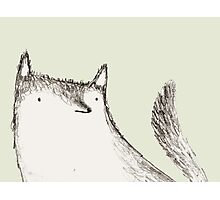 Gray Fluffy Wolf Photographic Print
