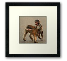 Youch!!! You bit my willy! Framed Print