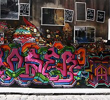 Hosier Lane by Erik Holt