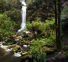 Erskine Falls by Erik Holt