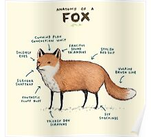 Anatomy of a Fox Poster