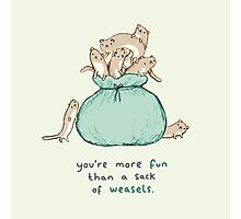 Sack of Weasels Photographic Print