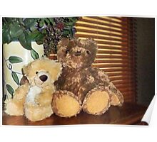 Two Teddies Poster