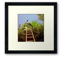 In high places Framed Print