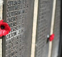 Lest We Forget by Jennifer Saville
