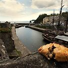 Cornish pasty by  the harbour by Rob Hawkins