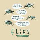 fLIES by Sophie Corrigan