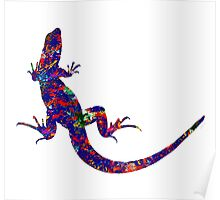Colourful Lizard Poster