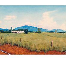Warrina Farmsheds - Innisfail Photographic Print