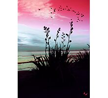 Days End Photographic Print