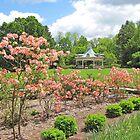 Mill Creek: Azaleas In Bloom by Jack Ryan