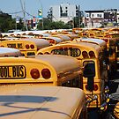 School Buses by Ian Ware