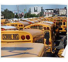 School Buses Poster