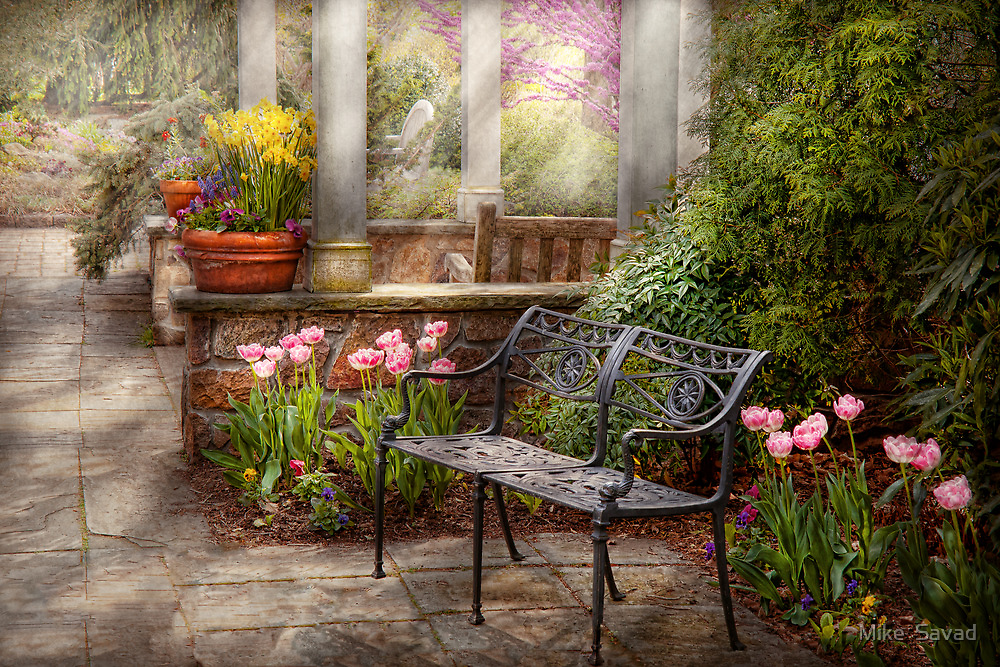 Spring - Bench - A place to retire  by Mike  Savad
