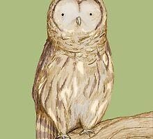 Tawny Owl by Sophie Corrigan
