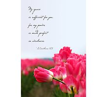 My Grace is Sufficient - Pink Tulip (Card) Photographic Print