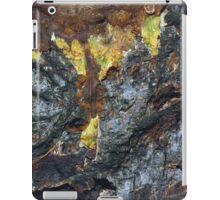 seasons colour iPad Case/Skin