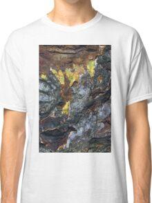 seasons colour Classic T-Shirt