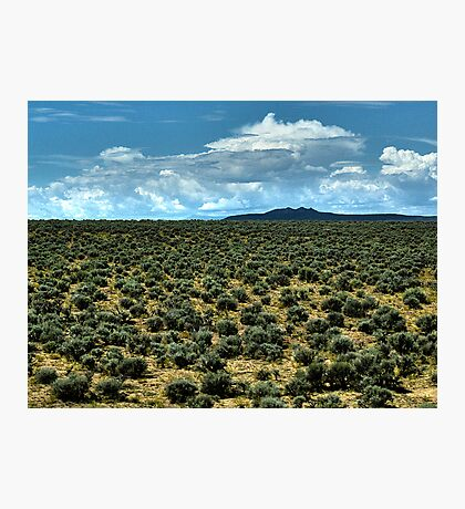 Filled with Sagebrush Photographic Print