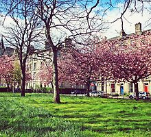 Springtime in Edinburgh by kmontgomery