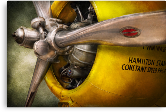 Plane - Pilot - Prop - Twin Wasp by Mike  Savad