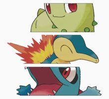 Pokemon - starters 2nd gen by Falconpaunch