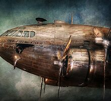 Plane - Pilot - The flying cloud  by Mike  Savad