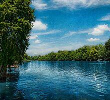 Catahoula Lake by DaraD