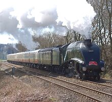 60019 'Bittern' passing Shere, Surrey by Ian Ware