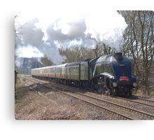 60019 'Bittern' passing Shere, Surrey Canvas Print