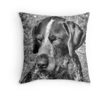 Hunting Dog in the Sun Throw Pillow