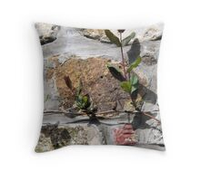Up the Wall Throw Pillow