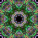 H138 Kaleidoscope from Heart Cropped by Karen Cropper
