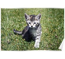 Clank the Kitten Poster