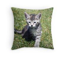 Clank the Kitten Throw Pillow