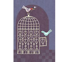 Leaving the Birdcage Photographic Print