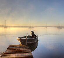 Misty Morning by Tam  Locke