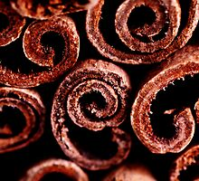 Cinnamon Sticks by Vee Robillard
