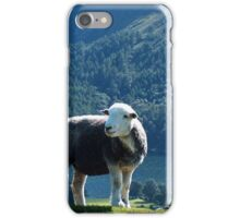 Sheep in The Lake District iPhone Case/Skin